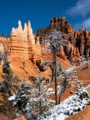 Queen's Garden Trail, Bryce Canyon