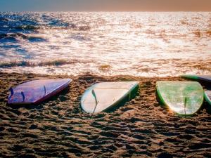 Surfboard Trinity